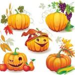 かぼちゃ画像22